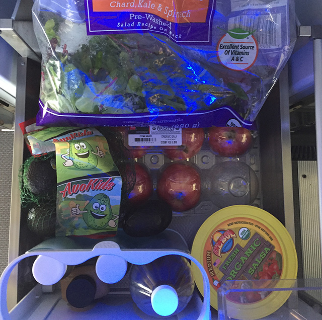 Fridge with plant-based diet foods